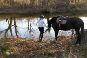3HORSE GIRL SHOWING WATER CIRCLES